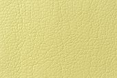 Light Green Artificial Leather Background Texture