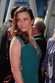 LOS ANGELES - SEP 15:  Linda Cardellini at the Creative Emmys 2013 - Arrivals at Nokia Theater on Se