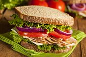 picture of tomato sandwich  - Homemade Turkey Sandwich with Lettuce Tomato and Onion - JPG
