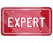 Expert Word License Plate Mechanic Technician Engineer Skills