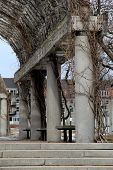 pic of creeping  - Old stone columns covered in strong creeping vines - JPG