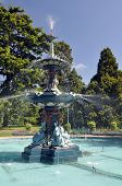 stock photo of plant species  - Christchurch botanical gardens new zealand is the home of this ornate pond and fountain established in to the english garden style the garden mixes native forest with planted species - JPG