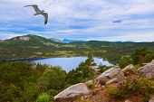 pic of fjord  - Mountains on the way to the Cliff Preikestolen in fjord Lysefjord  - JPG