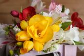 picture of crate  - Beautiful spring flowers in wooden crate - JPG