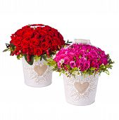 pic of bunch roses  - Bunch pink roses and red in bucket - JPG