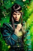 stock photo of fairies  - Beautiful male elf in the magic forest - JPG