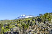 foto of kilimanjaro  - Mount Kilimanjaro the highest mountain in Africa  - JPG