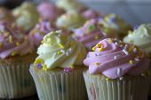 stock photo of sprinkling  - This is a photograph of Vanilla cupcakes topped with Pink and Yellow buttercream, and colorful sprinkles
