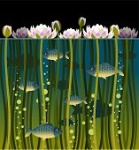 stock photo of lilly  - Illustration of water lilly and the fish - JPG