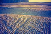 stock photo of plowing  - Vintage photo of plowed field in calm countryside - JPG