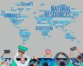 foto of nature conservation  - Natural Resources Conservation Environmental Ecology Concept - JPG