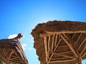 pic of canopy roof  - Two roof of reeds with bottom view - JPG