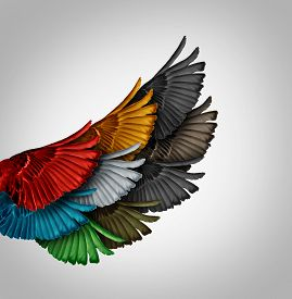 stock photo of merge  - Alliance concept and working together business idea as a diverse group of bird wings coming as one to form a giant powerful wing as a synergy metaphor for cooperation success and employee support - JPG