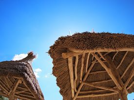foto of canopy roof  - Two roof of reeds with bottom view - JPG