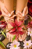 image of nail salon  - Woman - JPG