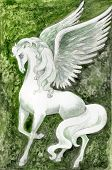 picture of white horse  - hand drawn illustration of white pegasus over green fantasy background  - JPG