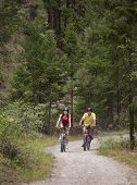 Outdoor photo of young adult couple riding bicycles on forest trail.