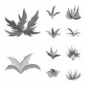 Vector Design Of Foliage And Floral Logo. Collection Of Foliage And Summer Stock Vector Illustration poster