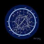 Horoscope Natal Chart, Astrological Celestial Map, Cosmogram, Vitasphere, Radix. Blue White Black Co poster