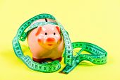 Pig Trap. Budget Crisis. Planning Budget. Business Problem. Limited Or Restricted. Piggy Bank And Me poster