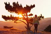 foto of psychodelic  - Lonely Tree on Mountain and Woman walking alone to Sunset behind view in orange and pink colors Melancholy solitude emotions concept - JPG