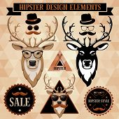 image of deer horn  - Hipster set with deer face - JPG