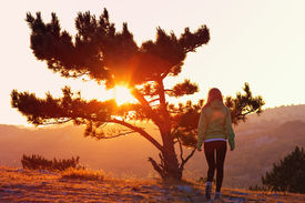pic of psychodelic  - Lonely Tree on Mountain and Woman walking alone to Sunset behind view in orange and pink colors Melancholy solitude emotions concept - JPG