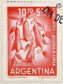 ARGENTINA - CIRCA 1960: Stamps printed in Argentina shows Lapageria Chilean bellflower or copihue