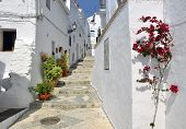 a typical whitewashed village street