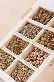 Tray With Assorted Dried Spices And Herbs