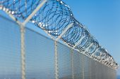 stock photo of coil  - Coiled razor wire with its sharp steel barbs on top of a wire mesh perimeter fence ensuring safety and security preventing access or the escape of prisoners blue sky background - JPG