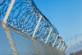 image of coil  - Coiled razor wire with its sharp steel barbs on top of a wire mesh perimeter fence ensuring safety and security preventing access or the escape of prisoners blue sky background - JPG