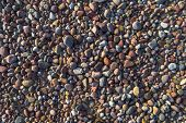 Background Pebbles Different Sizes Stony Beach