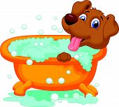 picture of washtub  - Vector illustration of Cartoon Dog bathing time - JPG