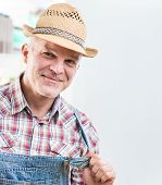 pic of dungarees  - Smiling cheerful farmer posing in checked shirt and dungarees - JPG