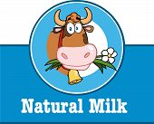 picture of moo-cow  - Cartoon Mascot Character Label With Cow And Text - JPG