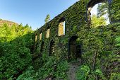 picture of aqueduct  - Stone Wall Old Aqueduct in the Forest sunny day - JPG