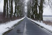 Постер, плакат: Country road in winter