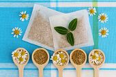 picture of chamomile  - Fresh and dried chamomile flowers and chamomile tea bags - JPG