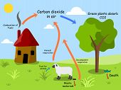 pic of carbon-dioxide  - Vector illustration of carbon dioxide cycle in nature - JPG
