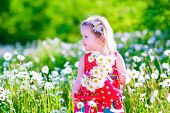 stock photo of daisy flower  - Kid gardening - JPG