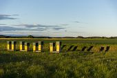 pic of beehive  - Row of yellow wooden beehives in green field with blue sky casting shadows in evening sunshine - JPG
