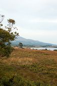 picture of galway  - View from the North end of Lough Corrib - JPG