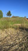 picture of marshes  - Withered marsh grass at the foot of the hill - JPG