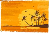 Sunset. Tropical beach. Palms. Vector illustration.