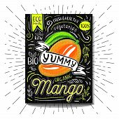 Colorful Label Poster Stickers Food Fruits Vegetable Chalk Sketch Style, Food And Spices. Mango Ripe poster