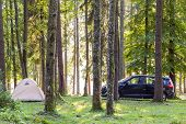 Camping Tent And A Car In Green Forest In Spring Sunny Morning With Fog Haze Among Trees. Recreation poster