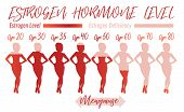 Estrogen Hormone Level. Beautiful Medical Vector Illustration In Pink Colours. Scientific, Education poster
