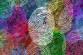 Diversity Identity And Privacy Concept And Personal Private Data Symbol As Diverse Finger Prints Or  poster