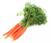 picture of crudites  - Bundle of fresh carrots - JPG